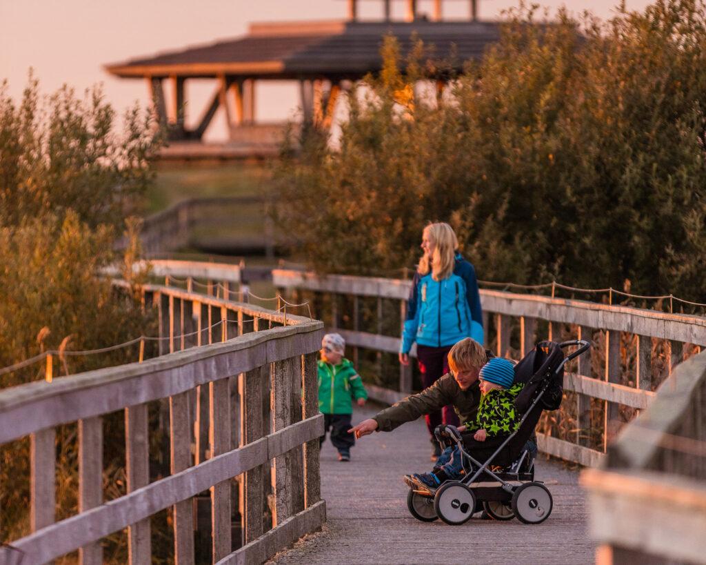 Familj med barnvagn och barn som går på spång. Foto.