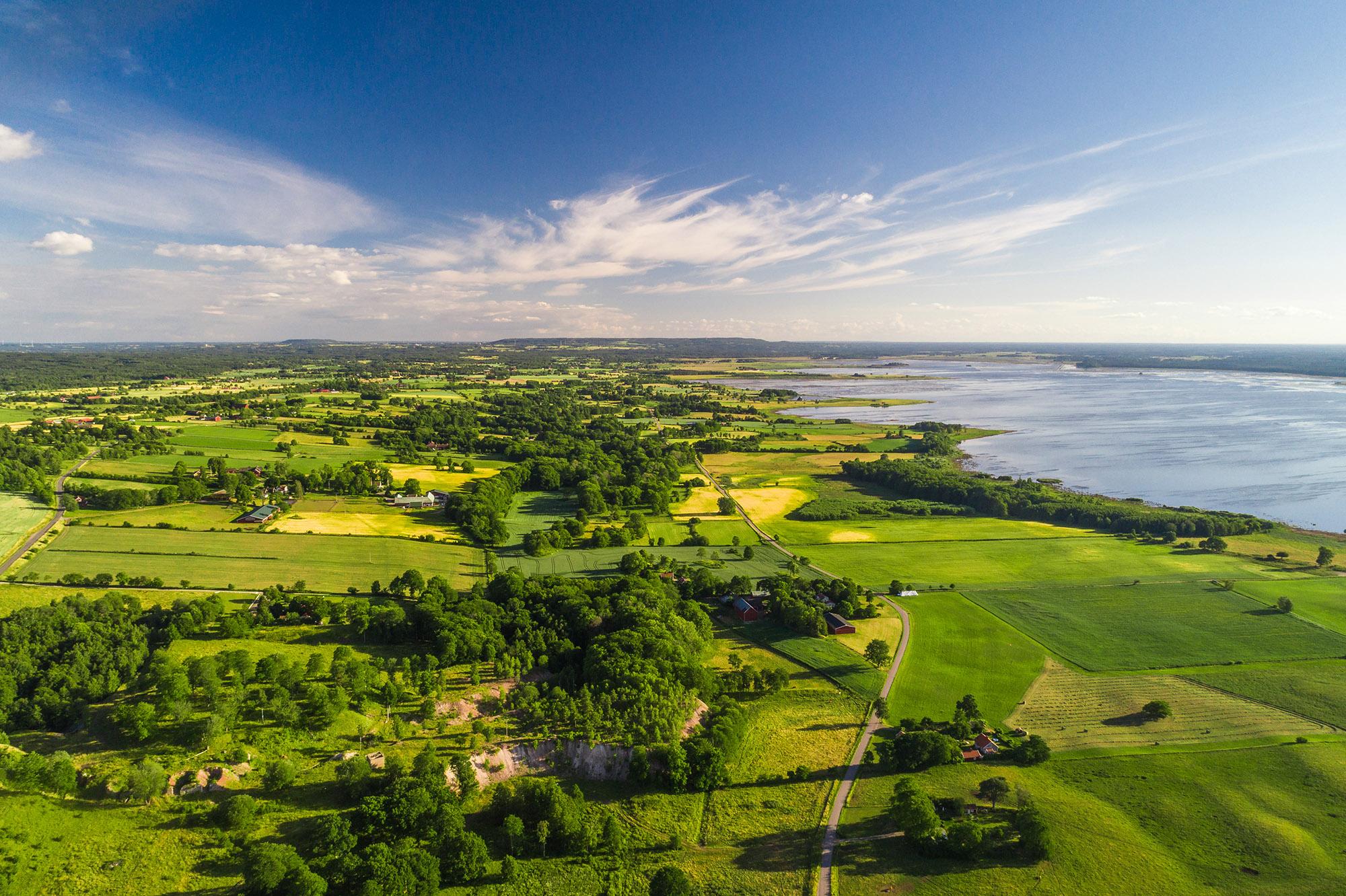 Lär dig mer om landskapet runt Hornborgasjön i vår guidning. Foto.