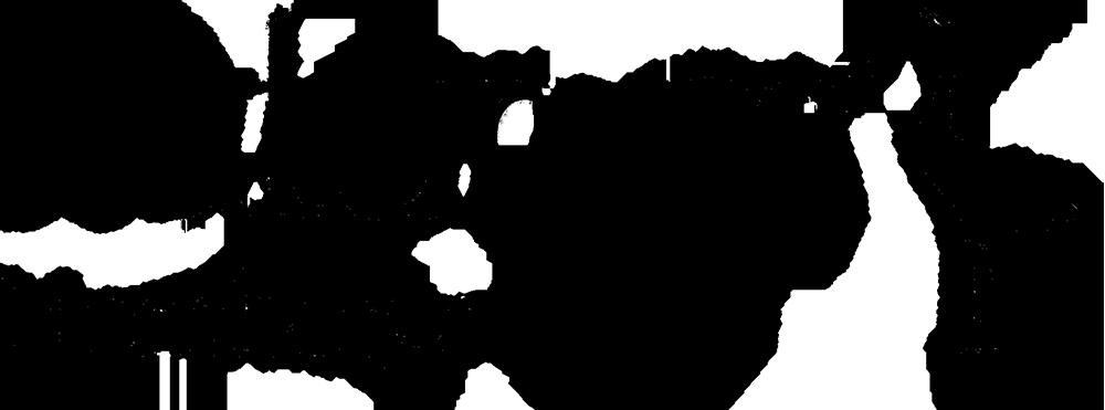 Logga för naturum Hornborgasjön. Logotyp.