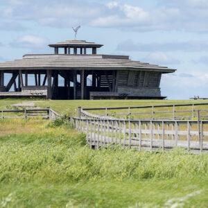 Spång ut till utsiktstornet vid Fågeludden. Foto.