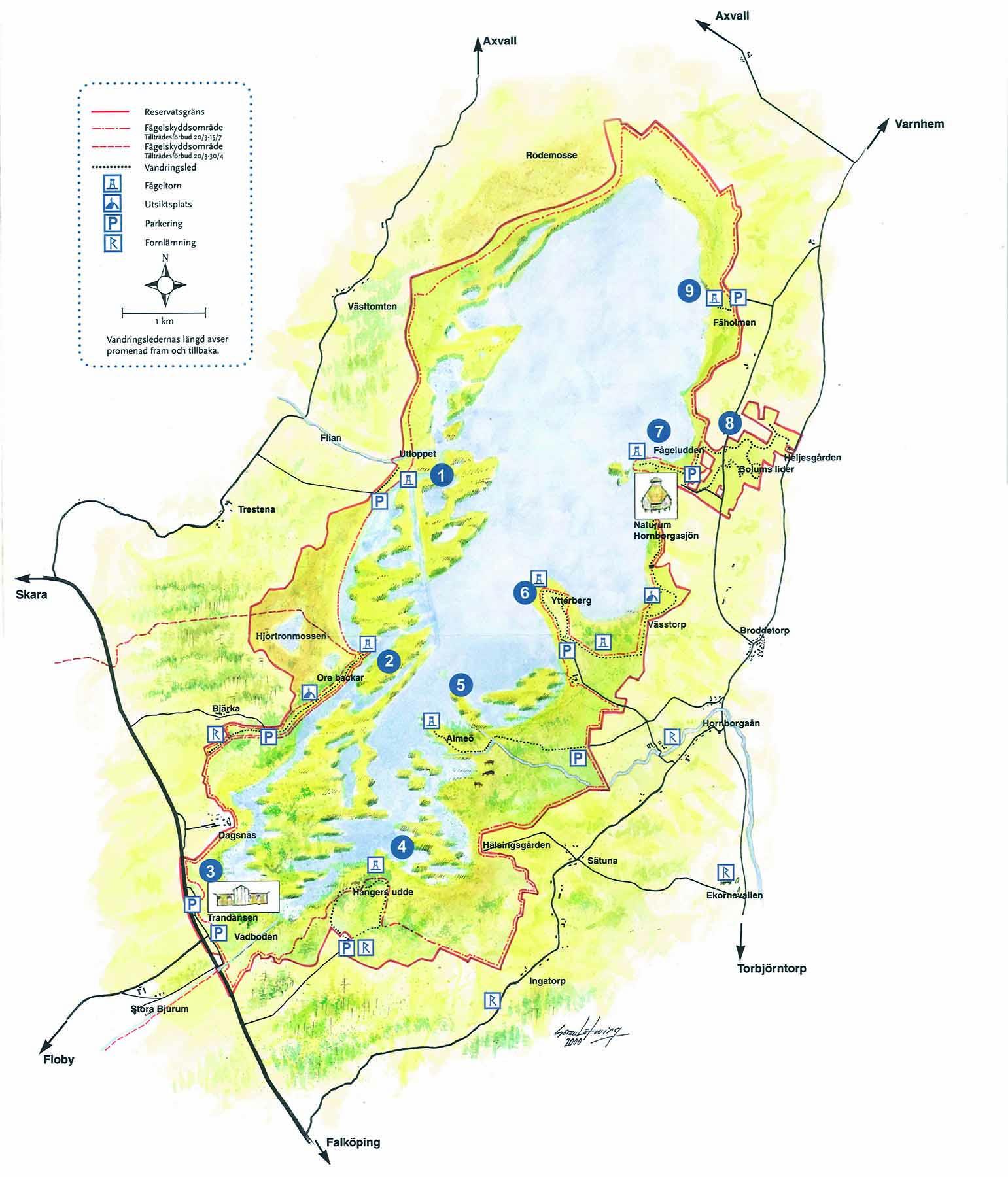 Karta över Hornborgasjön. Illustration.
